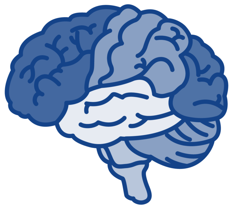 White and blue drawing of a brain